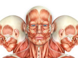 oral myofunctional therapy