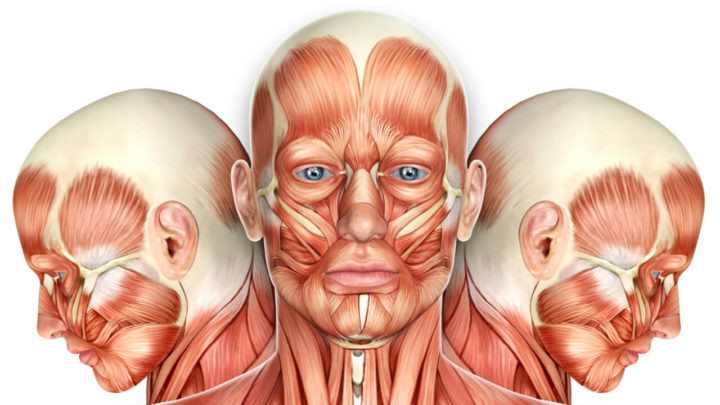What Is Oral Myofunctional Therapy?